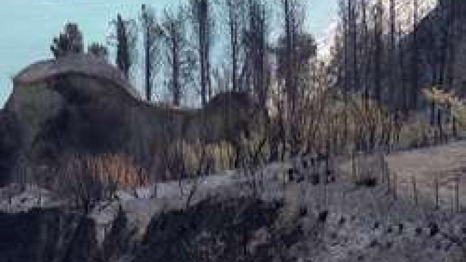 Fiorenzuola: sei milioni per far rinascere la falesia distrutta dalle fiamme