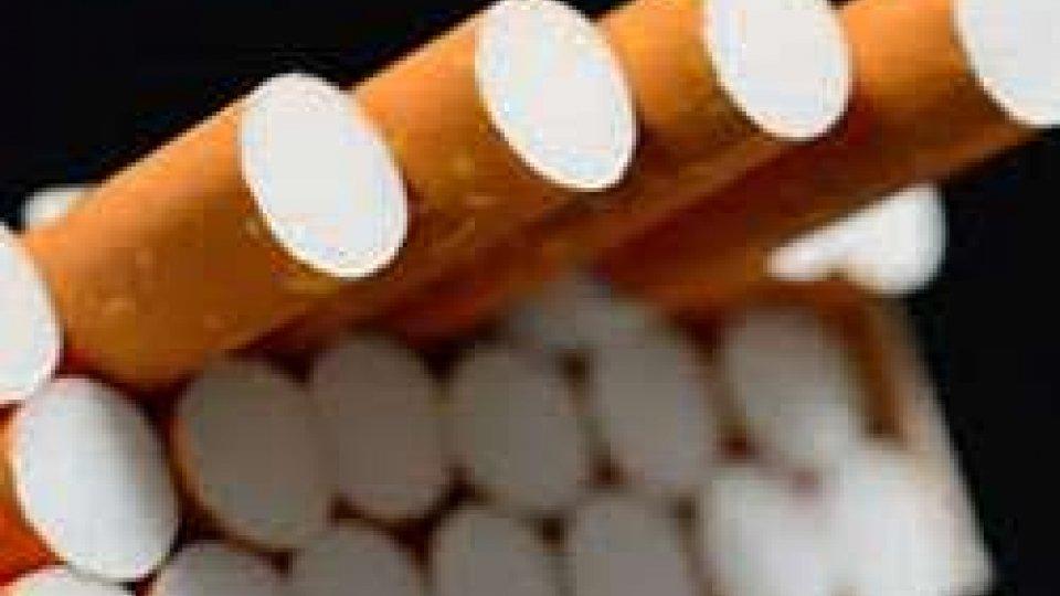 Ad Ancona sequestrati 16 kg di sigarette di contrabbando grazie a cane anti-tabacco