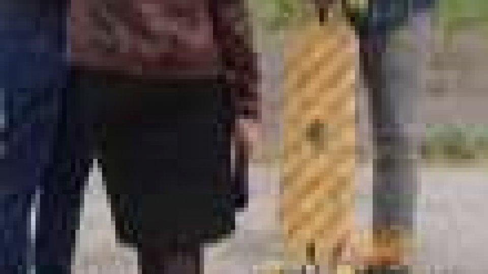 Rimozione rampa del parco Ausa: scompiglio tra i giovani