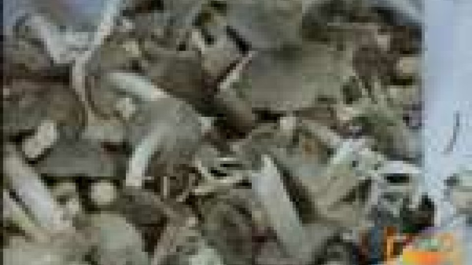 San Marino - Dal cinque settembre attivo il presidio micologico ambientale