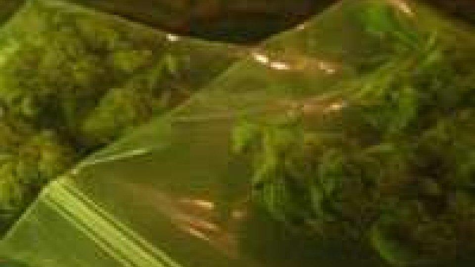 Morciano, 15 grammi di marijuana a scuola