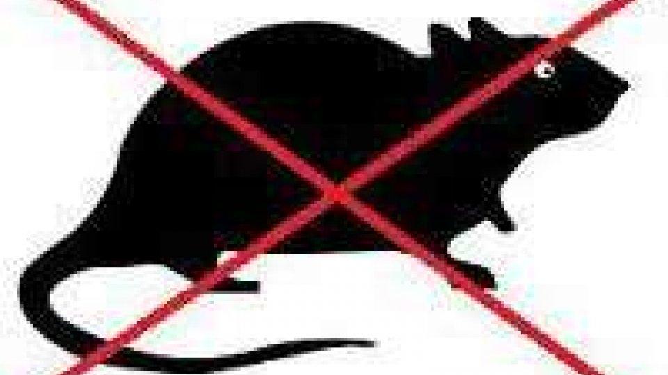 San Marino: Dipartimento di igiene urbana, sistemate trappole per ratti