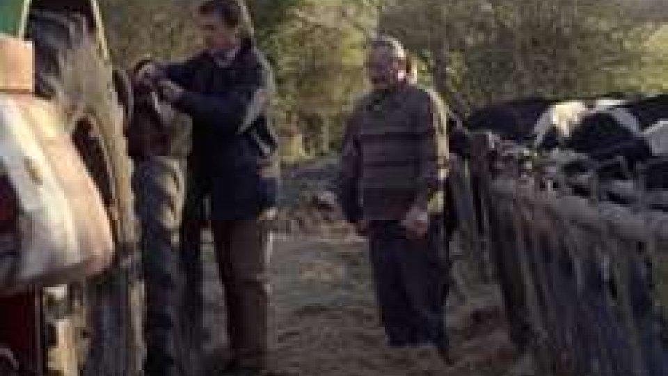 """""""Mèdicin de campagne"""" in prima visione il film francese dell'anno"""