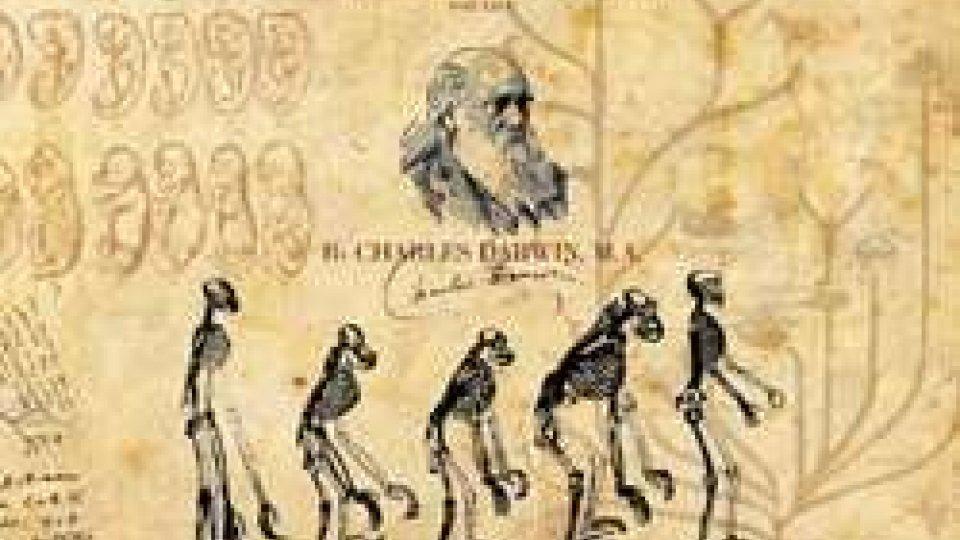 """24 novembre 1859: Charles Darwin pubblica """"L'origine delle specie"""""""