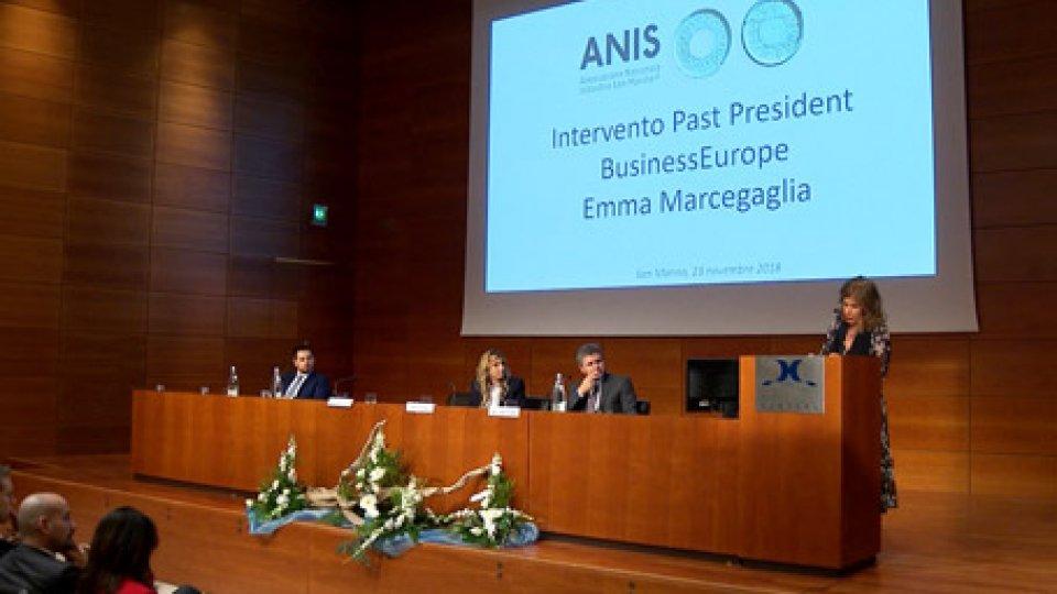 Assemblea Generale ANIS, presentato l'andamento delle aziende associate