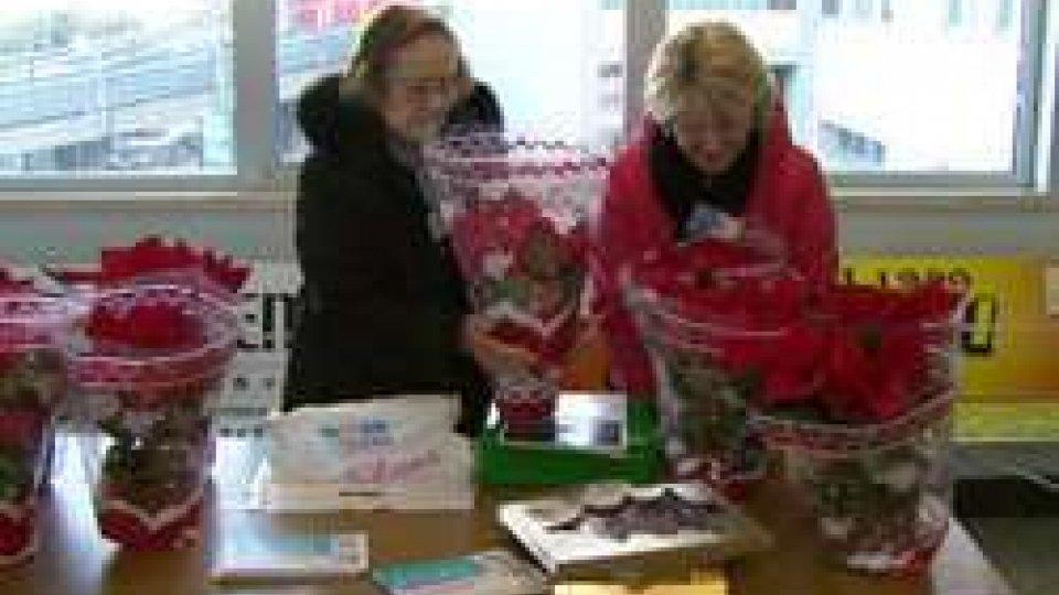 I volontari ASLEM vi attendono con le stelle di Natale per la tradizionale raccolta fondi