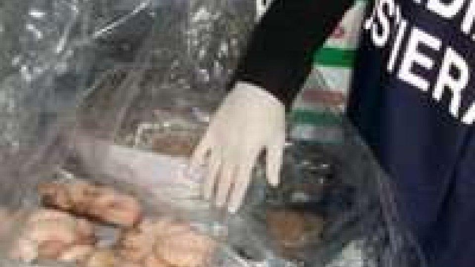 Pesaro, sequestrati 1.400 Kg di pesce scaduto