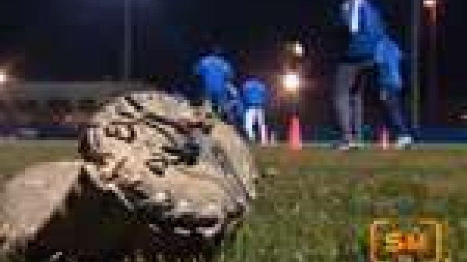 La T&A San Marino si è ritrovata a Serravalle per la preparazione pre-campionato