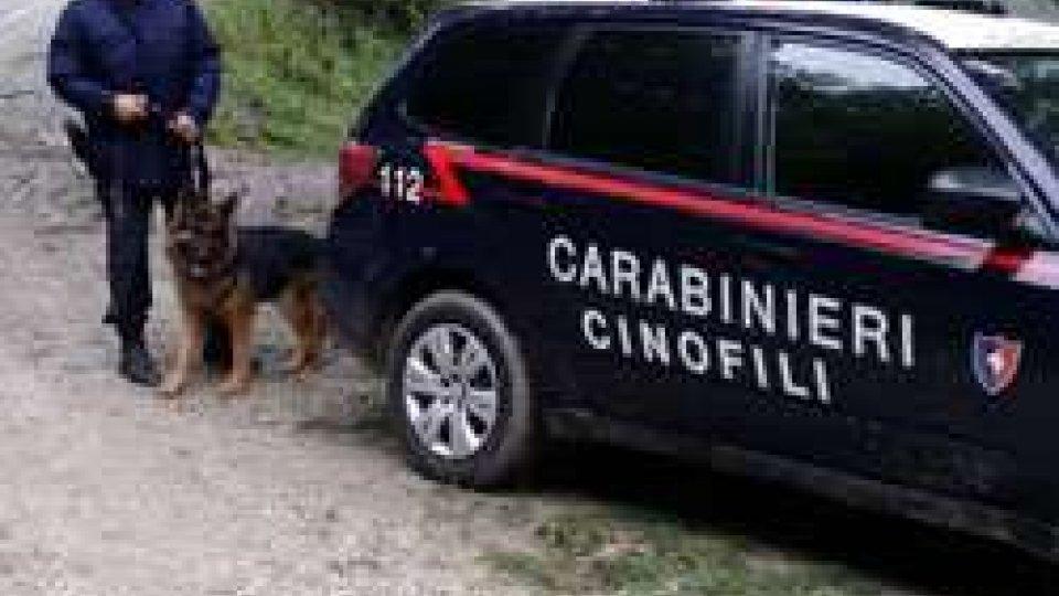 Casteldelci, rintracciato l'80enne scomparso: è in buone condizioni fisiche