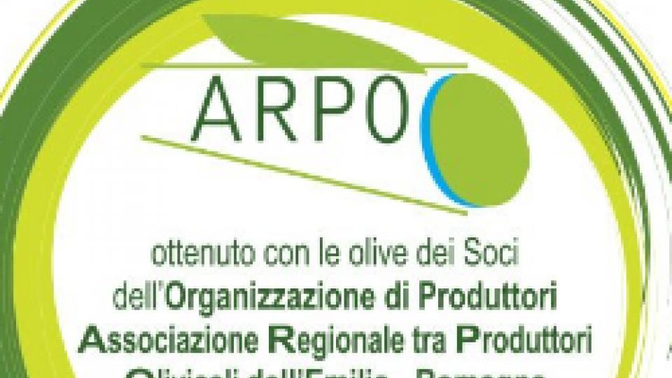 La filiera olivicola regionale  unita per la qualità: arriva il bollino di riconoscimento