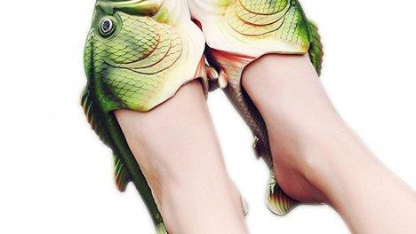 Pantofole fish