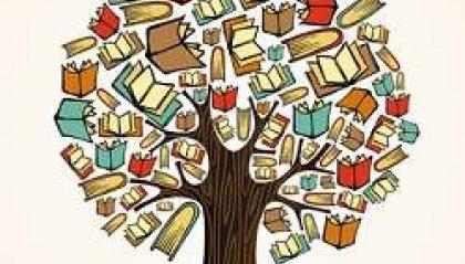 La bibliteca delle meraviglie