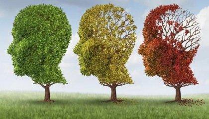 Alzheimer: scoperti fattori che accelerano morte neuroni