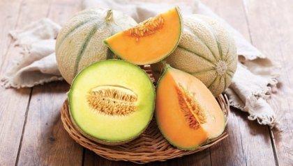 Coppette di melone con crema pasticcera alla mandorla vanigliata