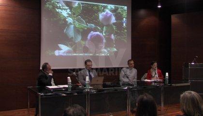 Diritto all'obiezione di coscienza al centro di un incontro di Operatori sanitari