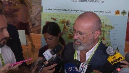 """Voto in Emilia Romagna, Zingaretti (Pd) sorprende tutti: """"A Roma la Raggi non deve dimettersi"""""""