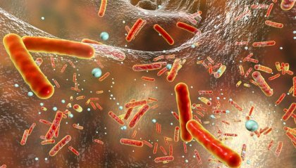 Italia prima in Ue per morti da antibiotico-resistenza