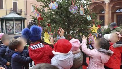 Le scuole riminesi addobbano gli alberi di Natale di Piazza Cavour