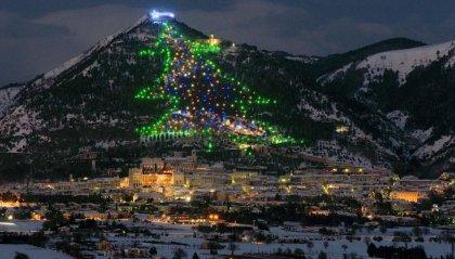 Qual è l'albero di Natale più grande al mondo?