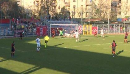 Rimini, la striscia positiva prosegue: 0-0 con la Vecomp Verona