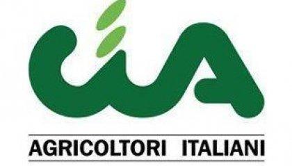 Cia Romagna chiede ai sindaci di riaprire i mercati alimentari