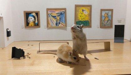 "Coppia in quarantena costruisce un museo in miniatura per i suoi ""gerbilli"""