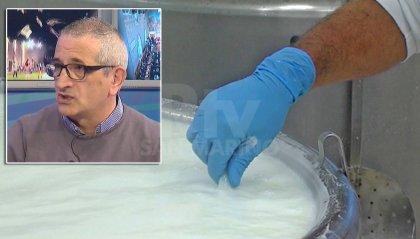 Centrale del Latte, Sportello Consumatori boccia il ripristino della zona bianca
