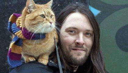 Addio a Bob, il gatto che ha reso famoso il suo padrone