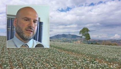 Agricoltura bio: i prodotti RSM potranno essere esportati liberamente