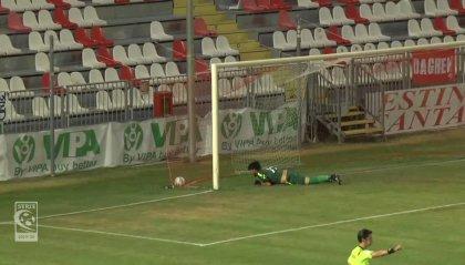 Novara e Reggiana in semifinale: ko Carpi e Potenza