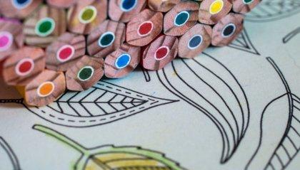I libri da colorare con le parolacce