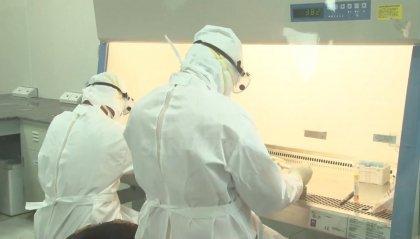 Covid-19: stabile il numero dei contagi, nessun nuovo caso a Rimini
