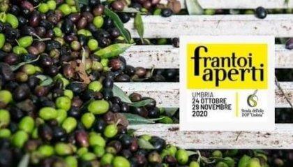 Torna Frantoi Aperti in Umbria