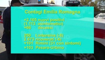 """L'annuncio dell'assessore alla Sanità Donini: """"Nei prossimi giorni Emilia Romagna tornerà in zona gialla"""""""