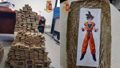 Rimini, maxi sequestro della Polizia:  275 chili di marijuana e hashish