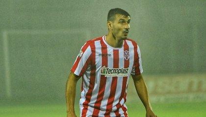 Vis Pesaro risolve consensualmente il rapporto sportivo con Tommaso Lelj