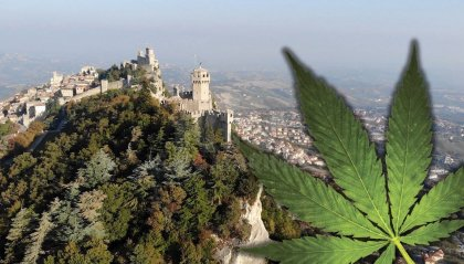Movimento Cannabis For Future – San Marino: Cannabis e Politica