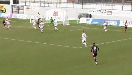 Il Sudtirol torna a vincere: Fink stende la Vis Pesaro