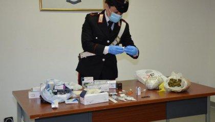 Rimini: il cane-poliziotto fiuta marijuana e sostanza dopante, arrestato 28enne