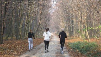 Camminare in fretta giova al cervello