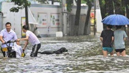 Il tifone In-Fa si abbatte sul versante orientale della Cina