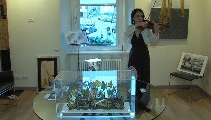 Alla Casa del castello di Borgo una mostra di arte sostenibile
