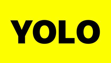 Yolo Economy