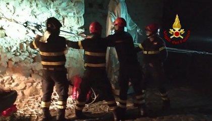 Cucciolo di meticcio cade da dirupo, salvato dai Vigili del fuoco di Novafeltria