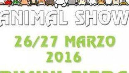 """Rimini, la prima edizione di """"Animal Show"""""""