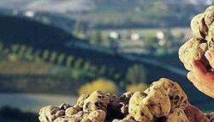 "San Marino, ""Sapori d'Autunno: i Weekend al Tartufo"""