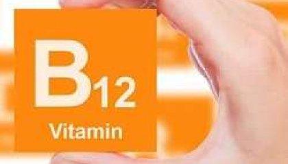 Bocconi di salute - Vitamina B12