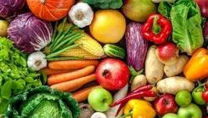 Bocconi di salute 2018 - Gli alimenti che prevengono prima parte