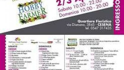 Wellness Food Festival a Cesena