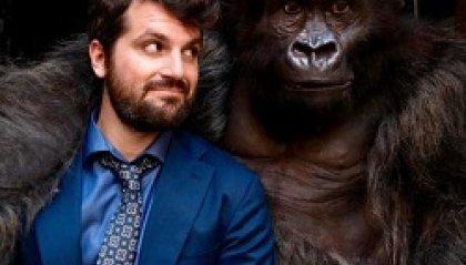 SM Cinema - Attenti al gorilla ed altri